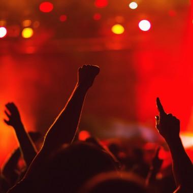 Fist raised at concert
