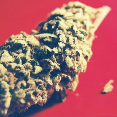 thumbnail-weed